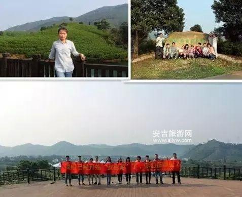 中国白茶第一村