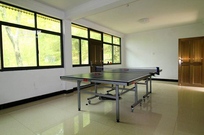 农家乐乒乓球室
